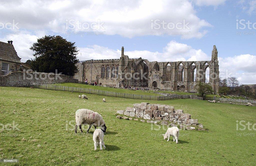 Bolton Abbey stock photo