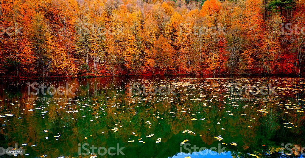 Bolu seven lakes. stock photo