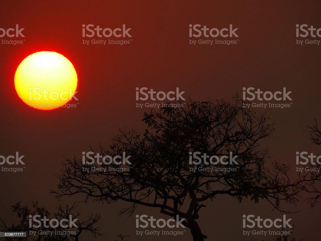 Bom dia Mato Grosso stock photo