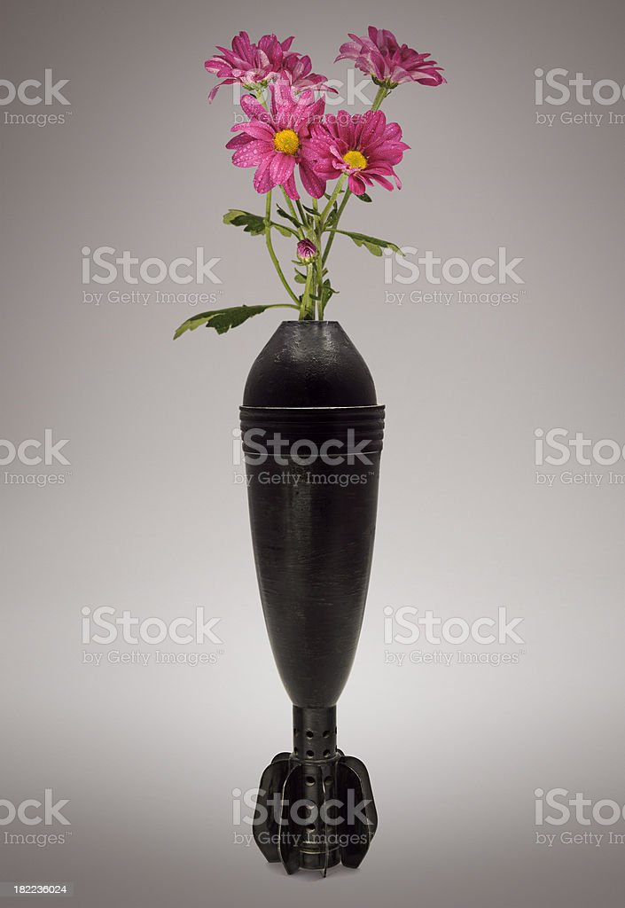 Bombing  Flowers royalty-free stock photo