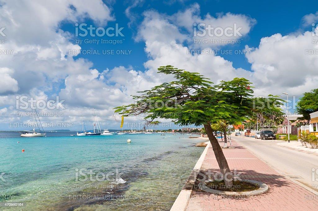 Bonaire Marina stock photo