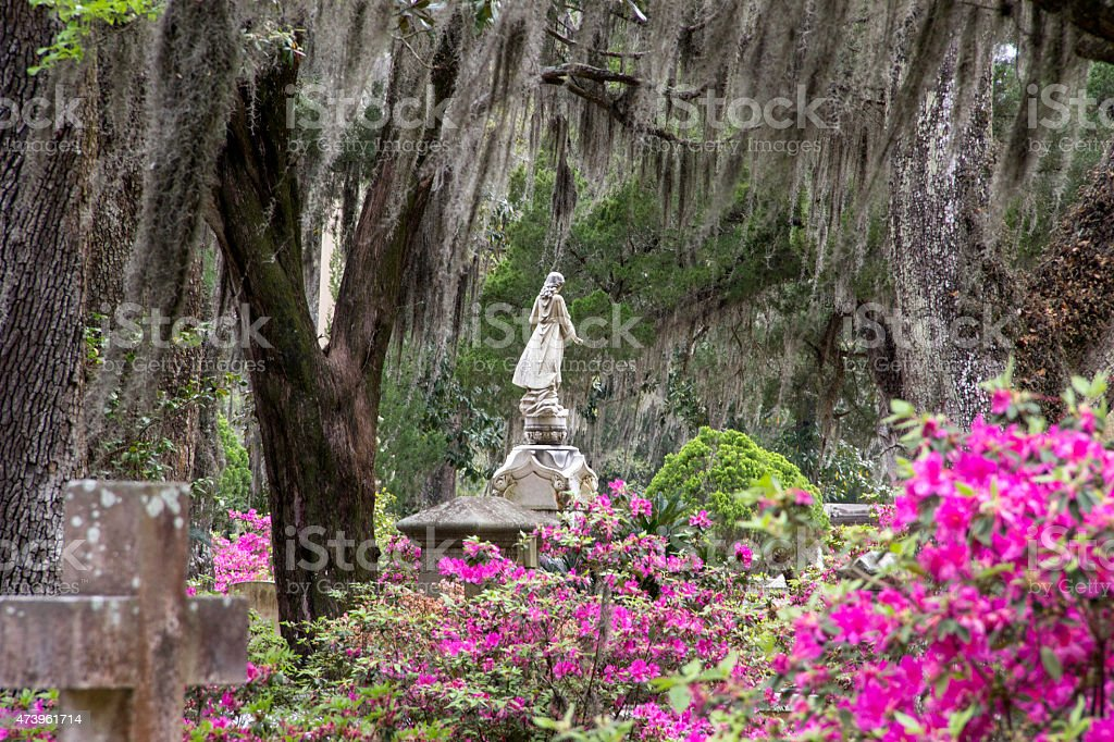 Bonaventure Cemetery in Savannah Georgia stock photo