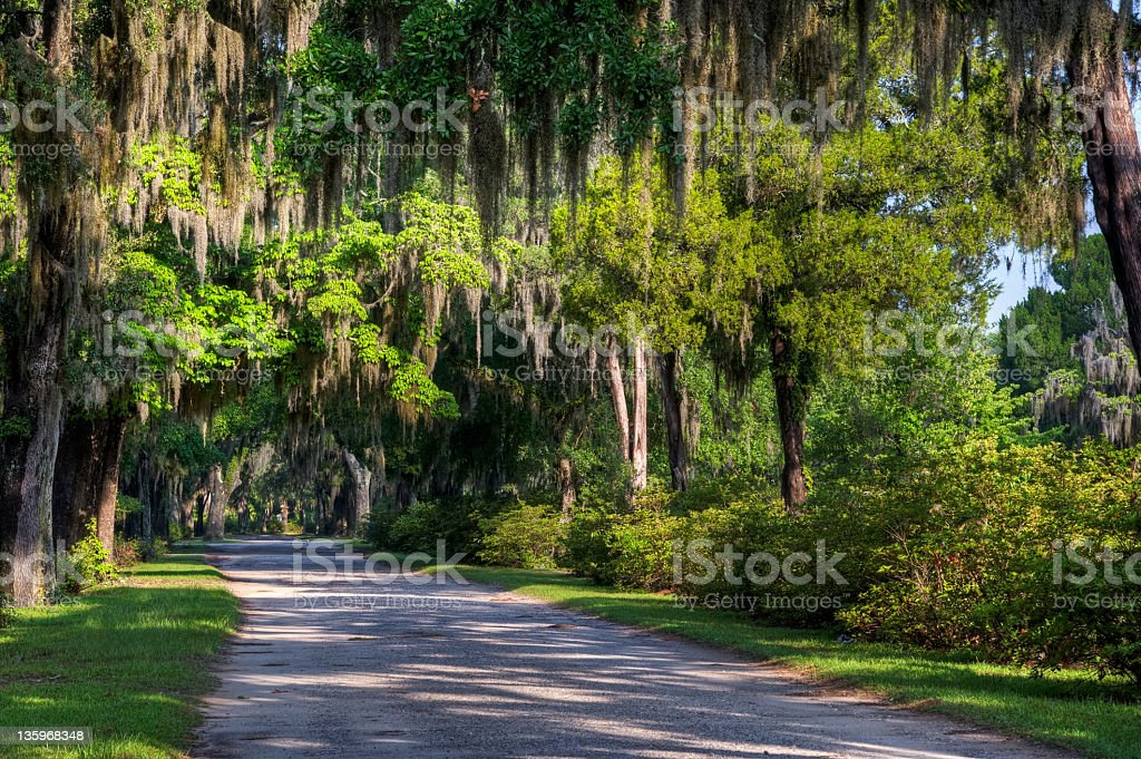 Bonaventure Cemetery, Savannah stock photo
