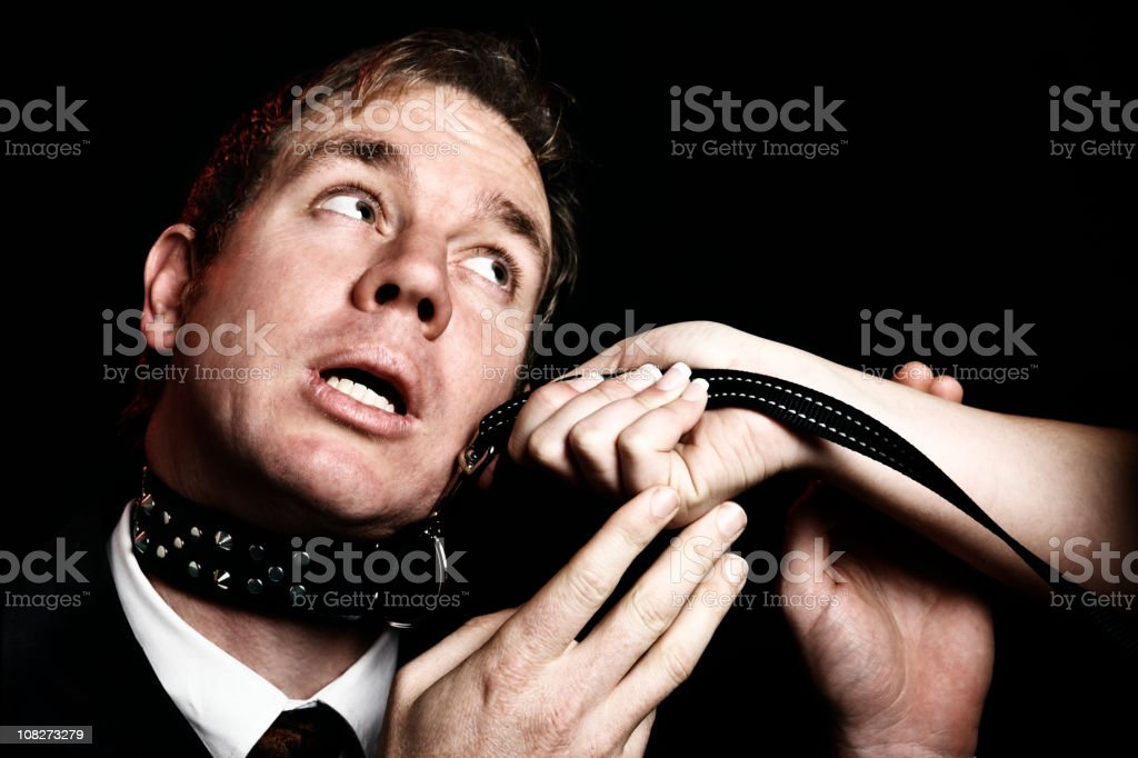 Bondage businessman on leash pleads like puppy dog stock photo