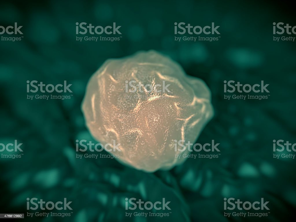 Bone marrow stem cells stock photo