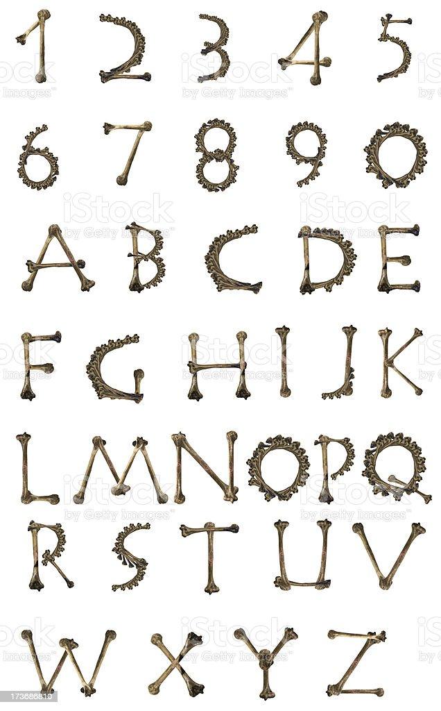 bones alphabet royalty-free stock photo