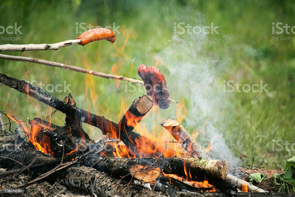 Bonfire campfire fire Flames grilling steak on the BBQ royalty-free stock photo