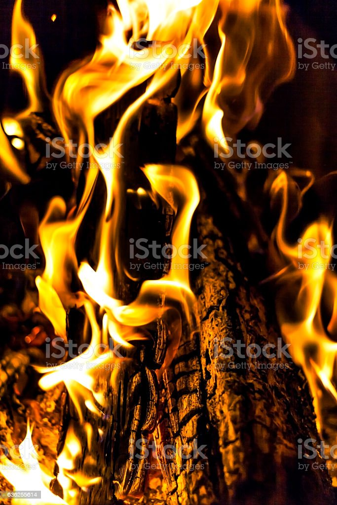 bonfire, fire, logs close up at night stock photo