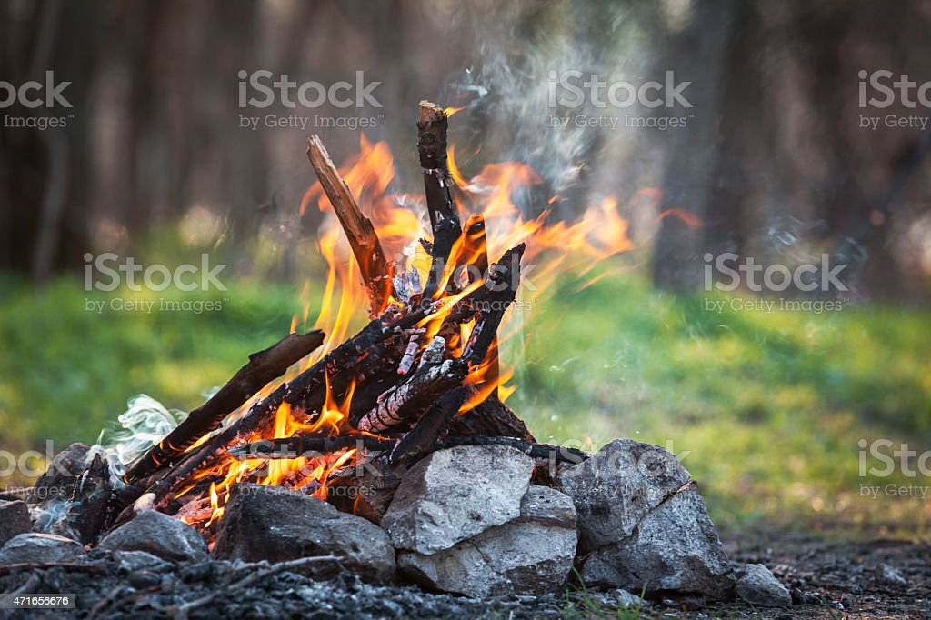 Bonfire in the spring forest. coals of fire stock photo