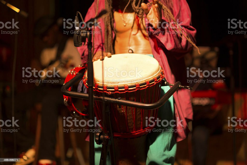 bongo royalty-free stock photo