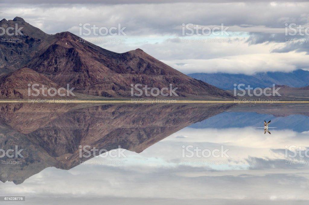 Bonneville Salt Flats Silver Island Mountains desert gull reflections Utah stock photo