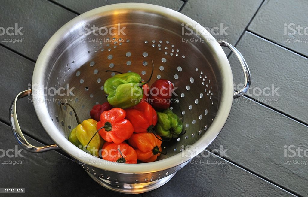 Bonney Pepper Colander stock photo