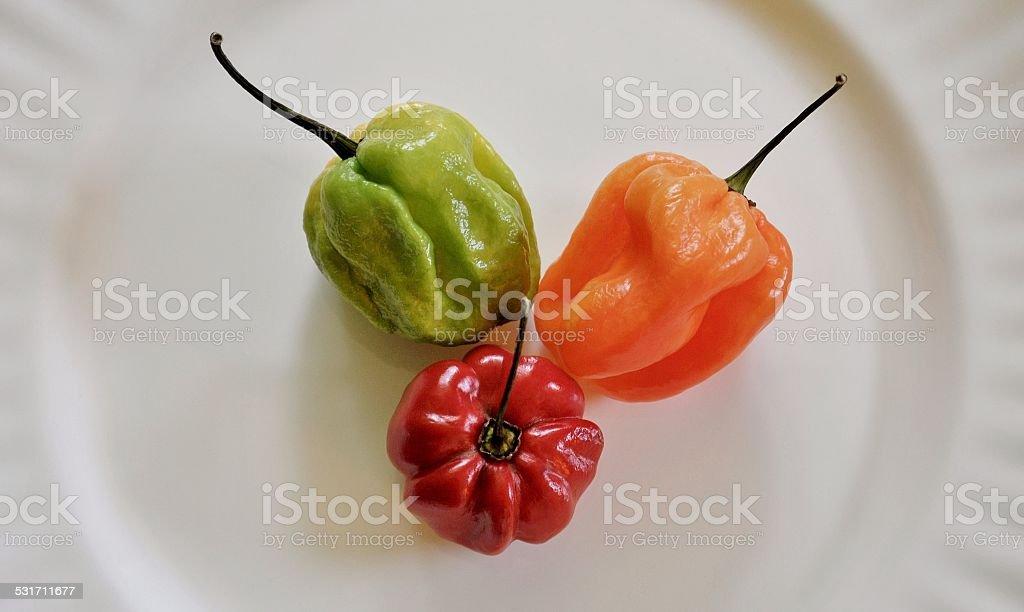 Bonney Pepper Trio stock photo