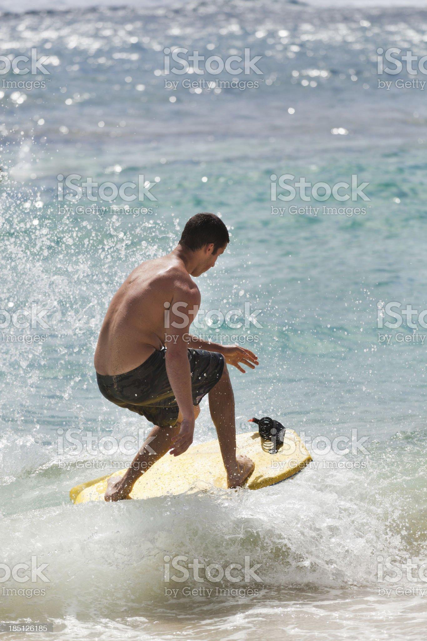 Booggie Boarder Surfing in Kauai, Hawaii royalty-free stock photo