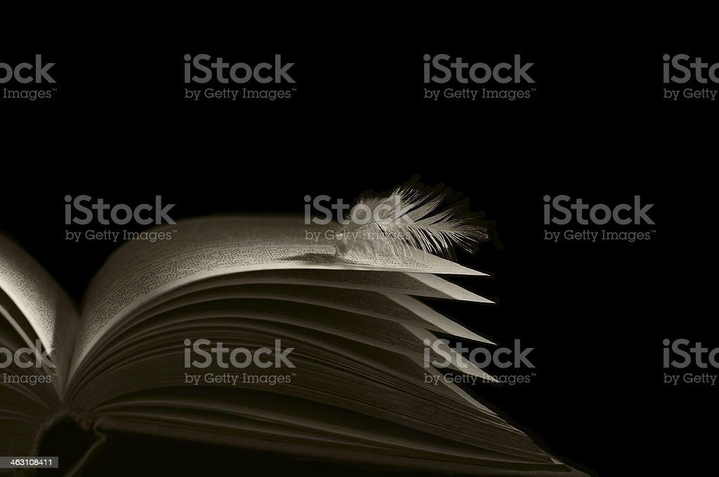 book angel( skrezhal) stock photo