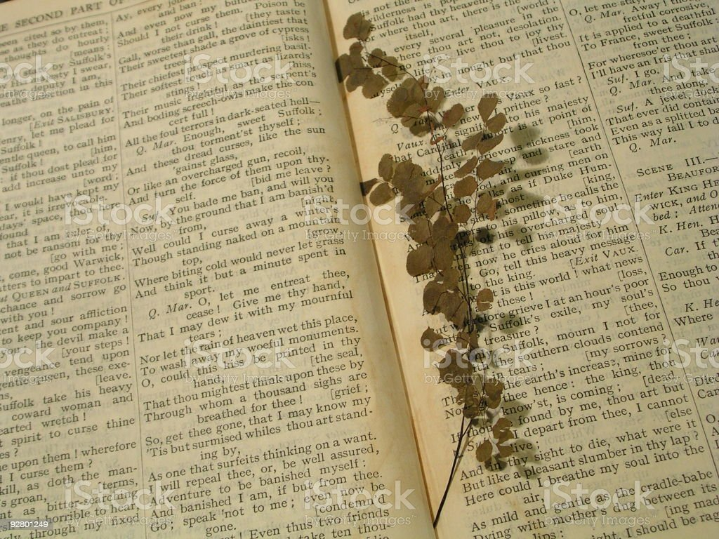 Book - antique stock photo