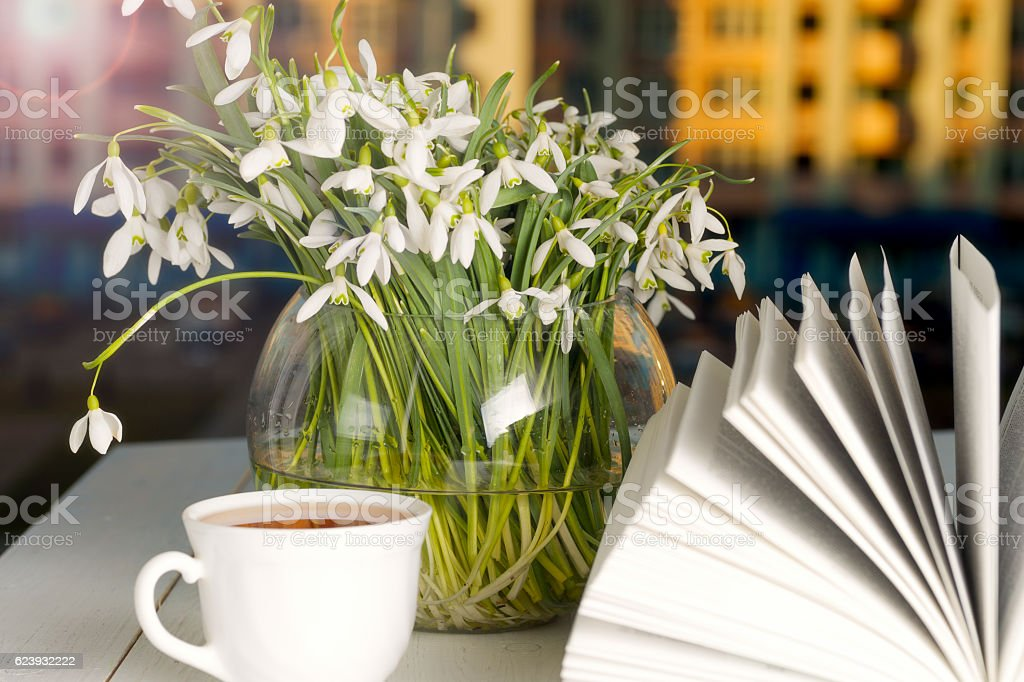 book in front of the window in the morning stock photo