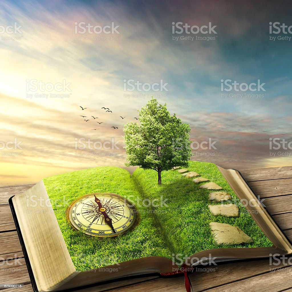 Book of life stock photo
