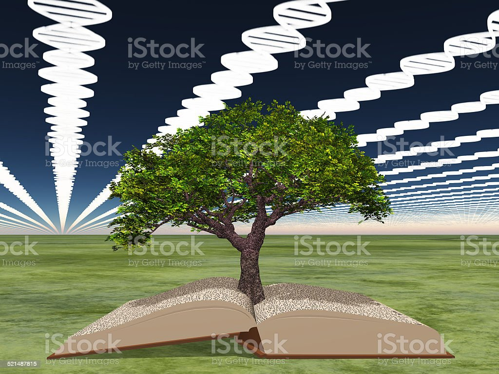 Book of life with tree of life stock photo
