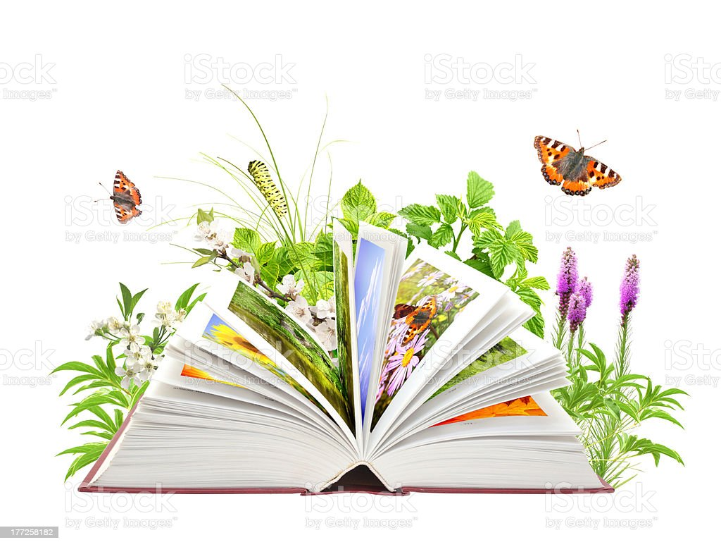 Book of nature royalty-free stock photo