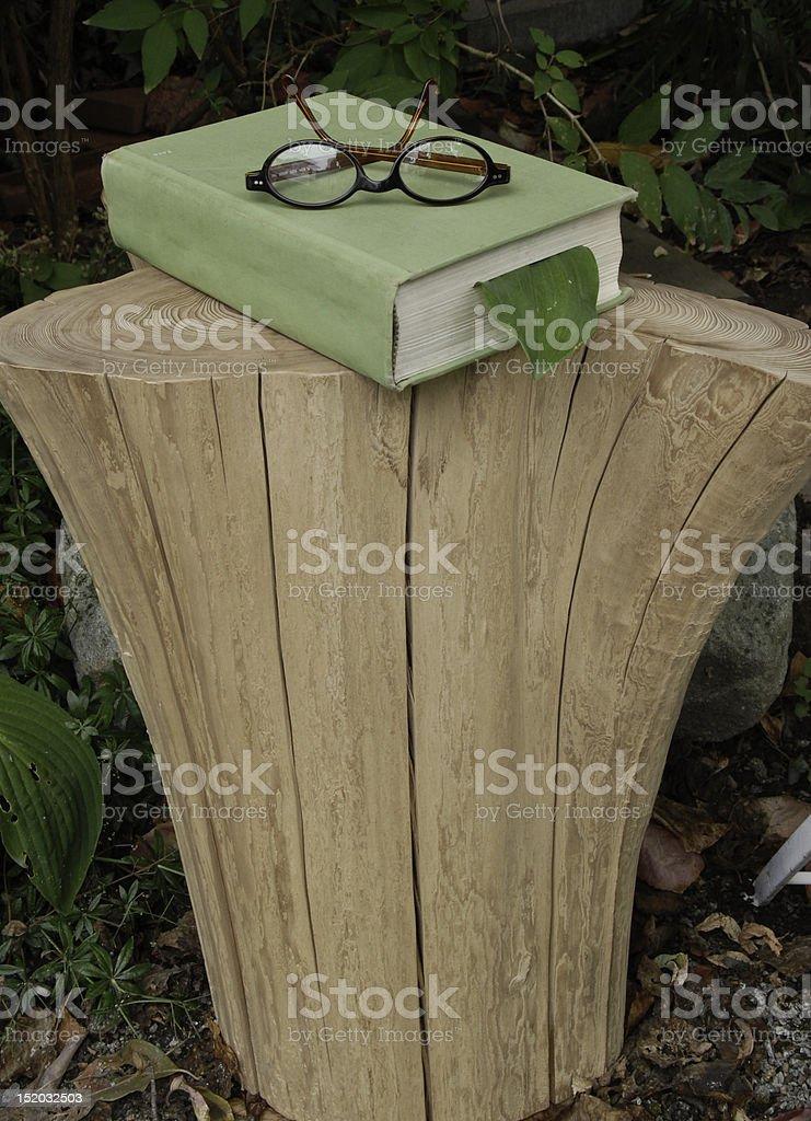 Book on stump royalty-free stock photo