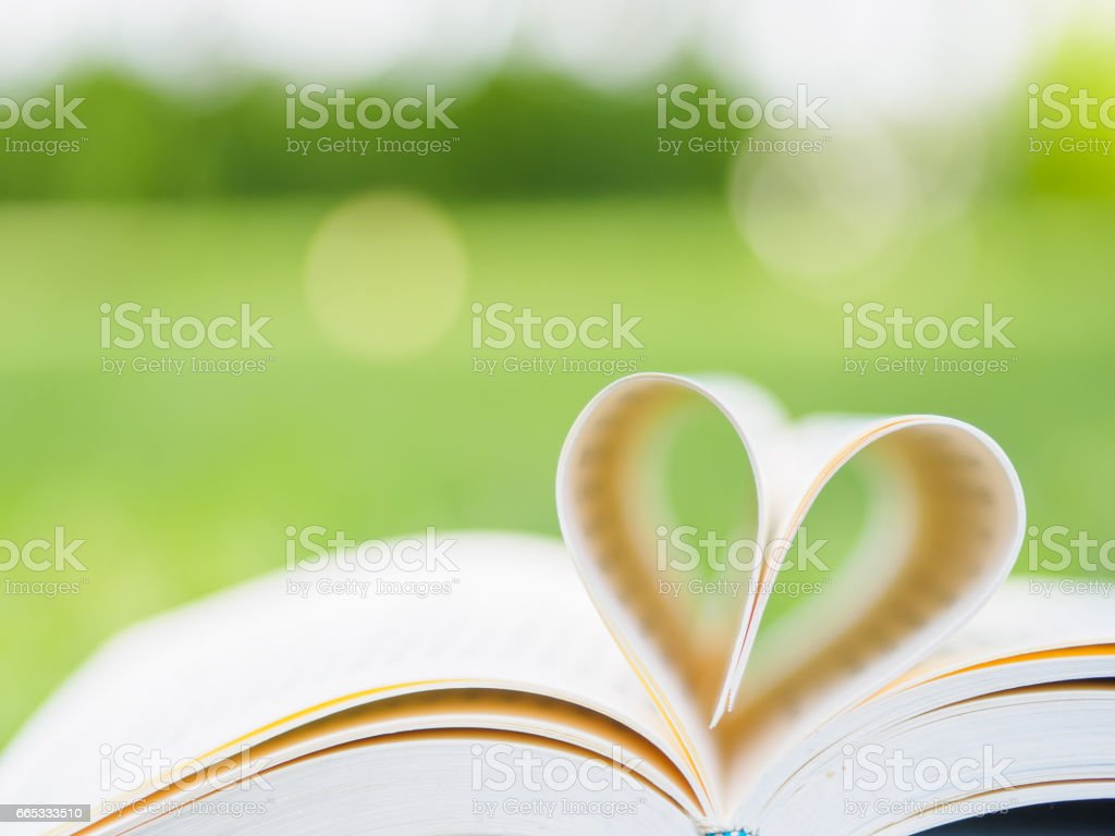 book on table in garden with top one opened and pages forming heart shape stock photo