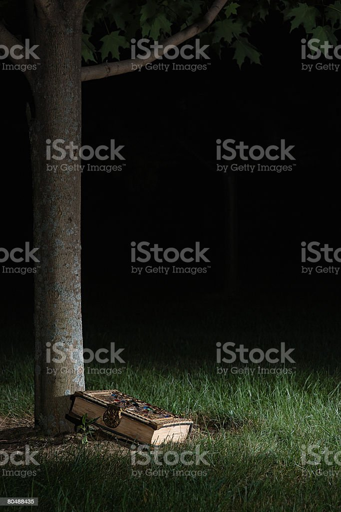 Book under a tree stock photo