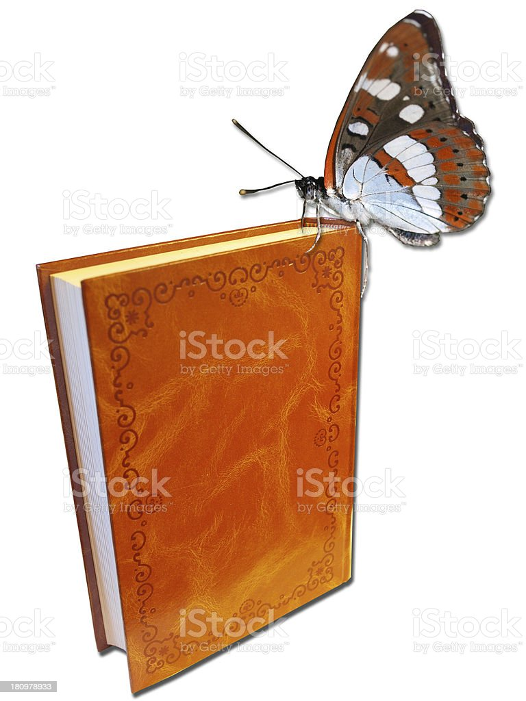 Libro con mariposa royalty-free stock photo