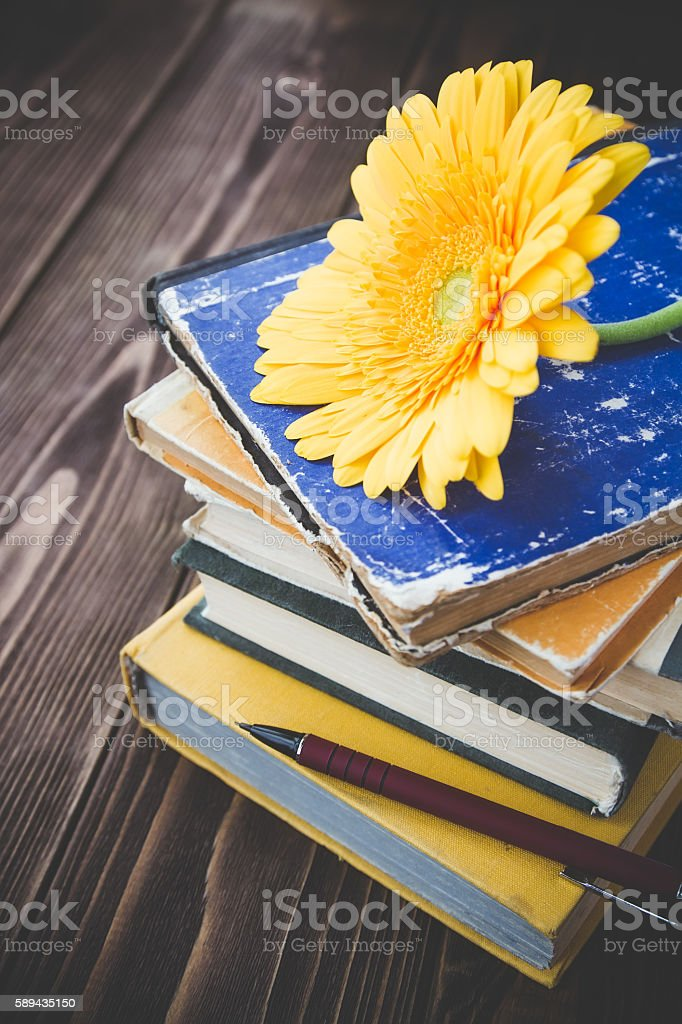 books and flower on a wooden background stock photo
