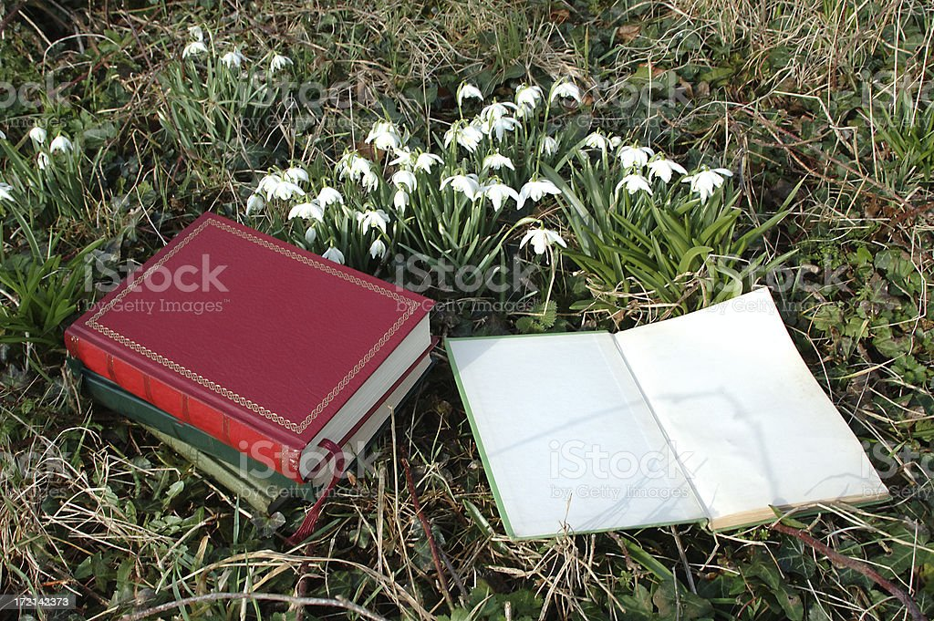 books and snowdrops request stock photo