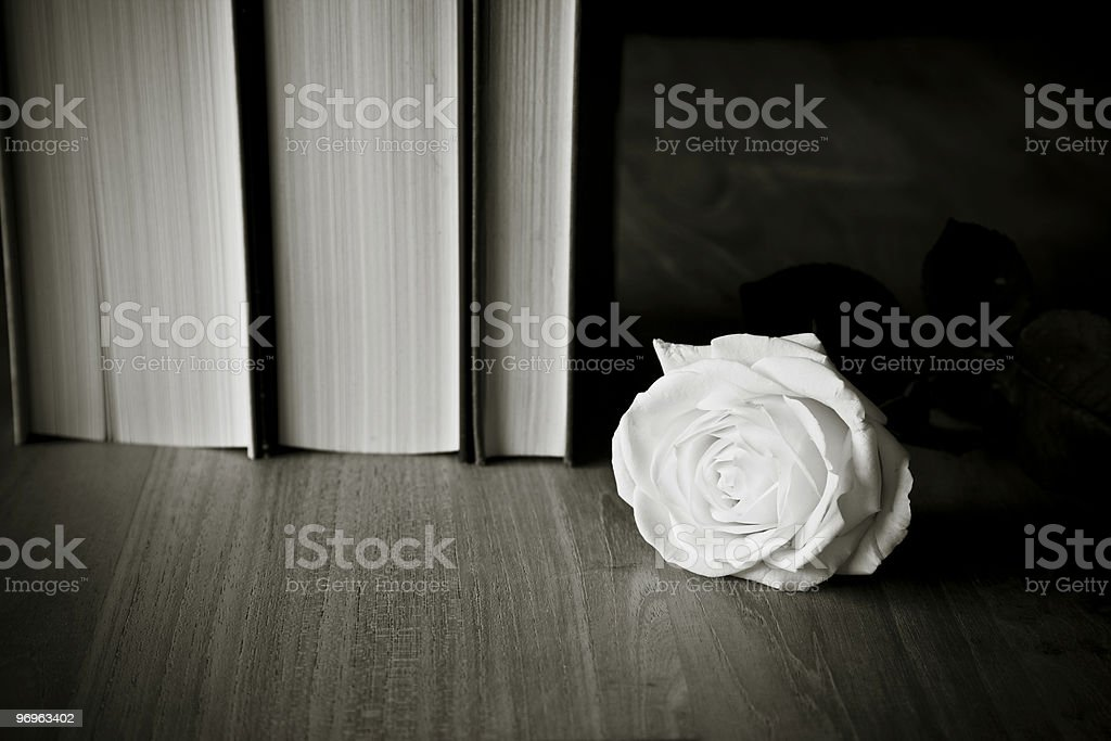 Books and White Rose royalty-free stock photo