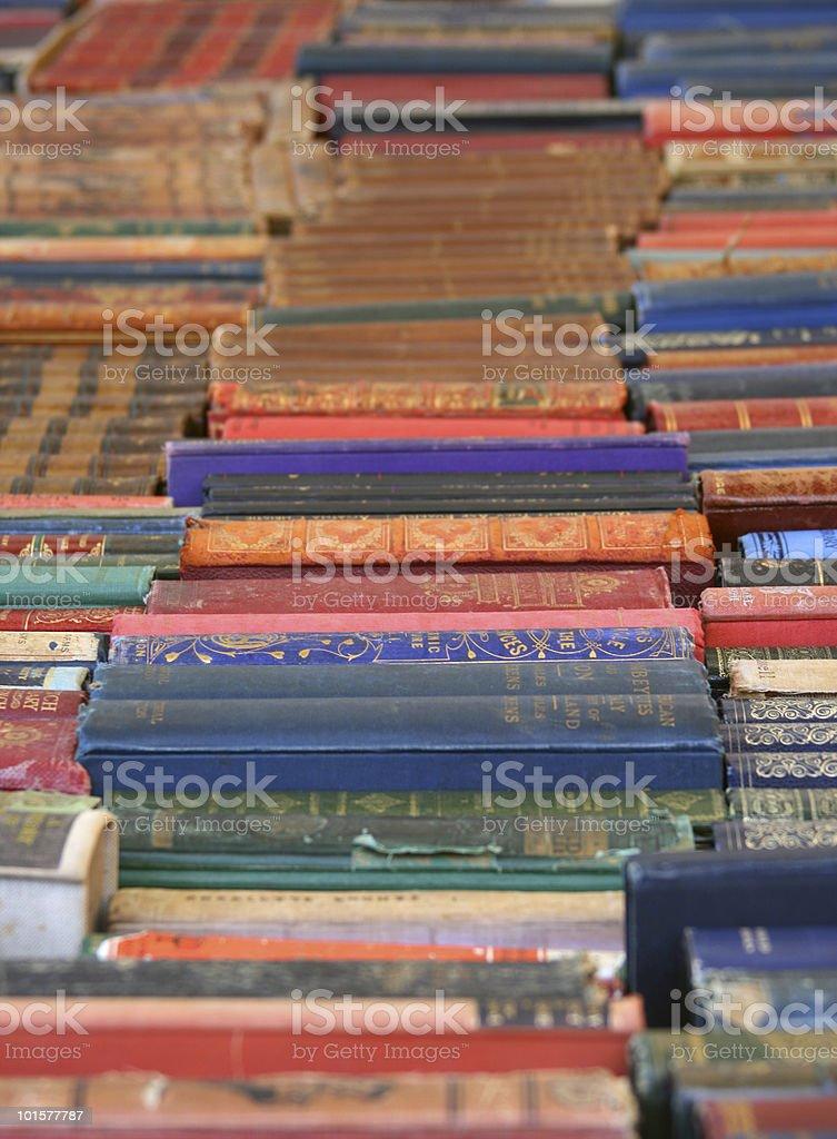 Books Galore royalty-free stock photo