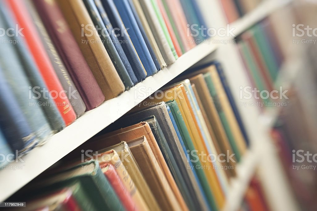 Books In Rows On Bookshelves royalty-free stock photo
