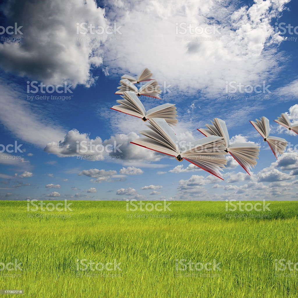 Books on meadow royalty-free stock photo
