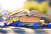 books on natural background.