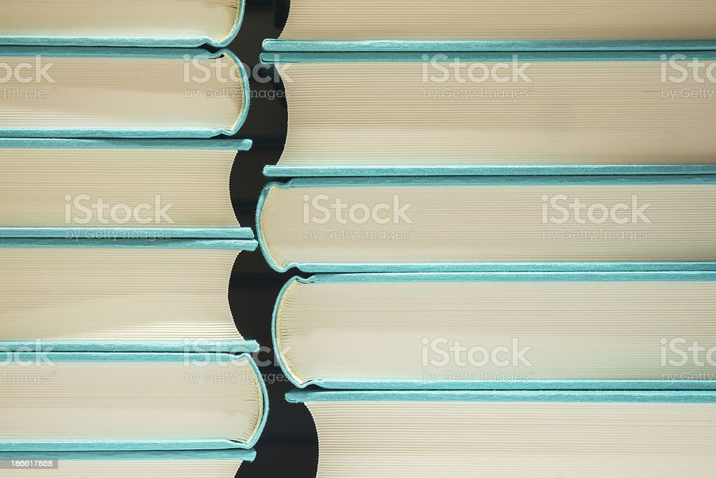 Books. royalty-free stock photo