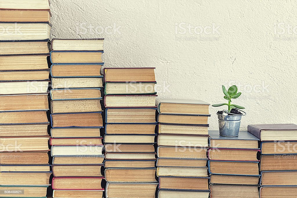 Books with lucky plant stock photo