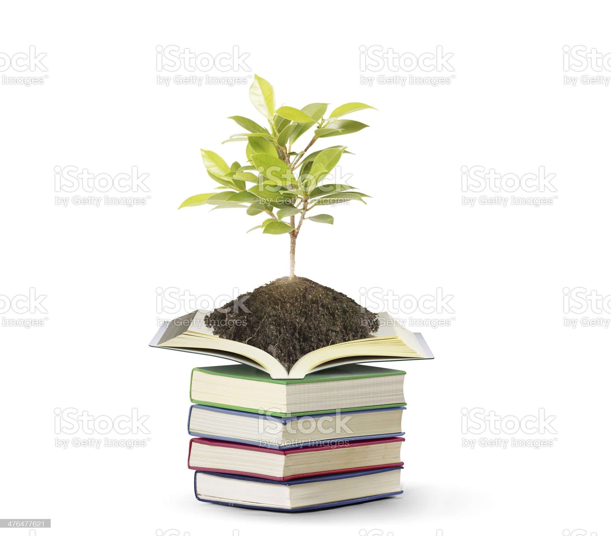 books with plant royalty-free stock photo
