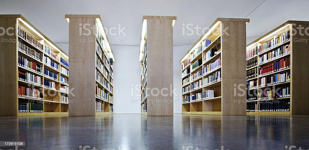 Bookshelves royalty-free stock photo