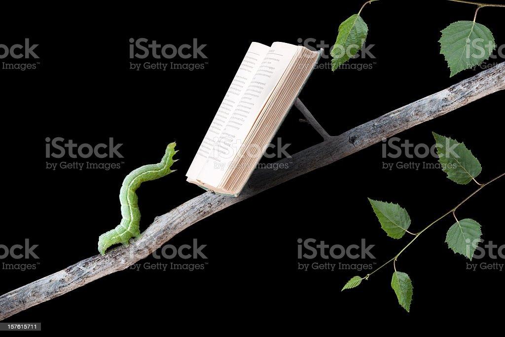 Bookworm Reading Book stock photo