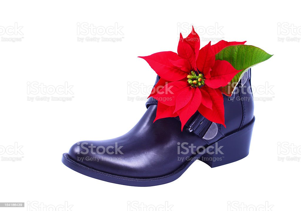 Boot and Poinsettia royalty-free stock photo