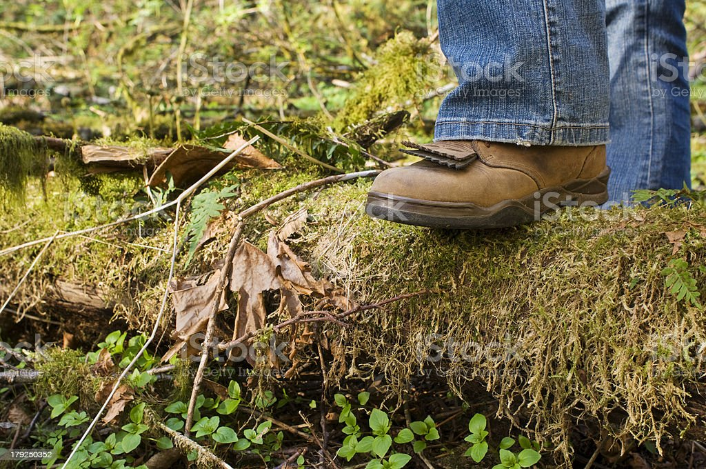 Boot stepping on a log stock photo