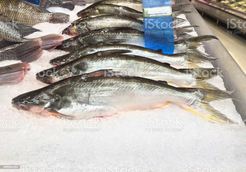 Booth of frozen fish on sell at supermarket. stock photo