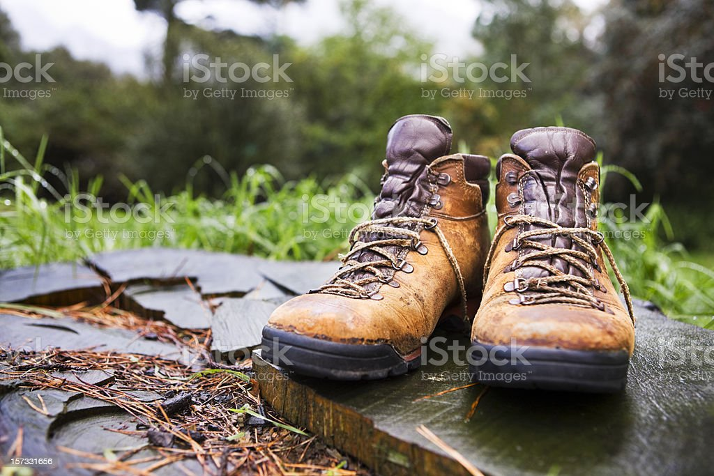 Boots in the woods stock photo