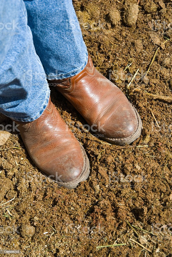 Boots Standing in Fresh Horse Manure, Farm Woker royalty-free stock photo