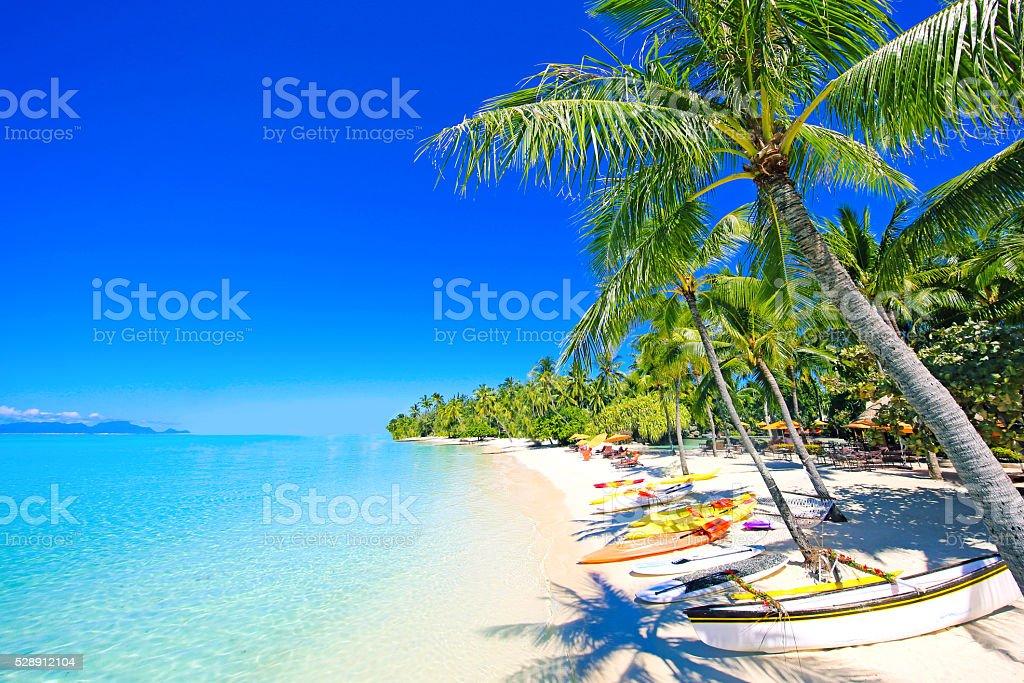 Bora Bora Beach stock photo
