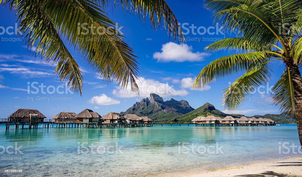 Bora Bora framed by palm trees stock photo