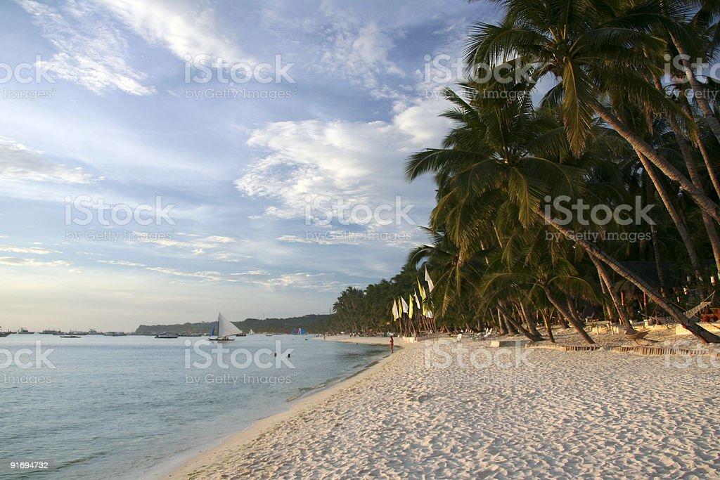 boracay island tropical beach palm trees royalty-free stock photo