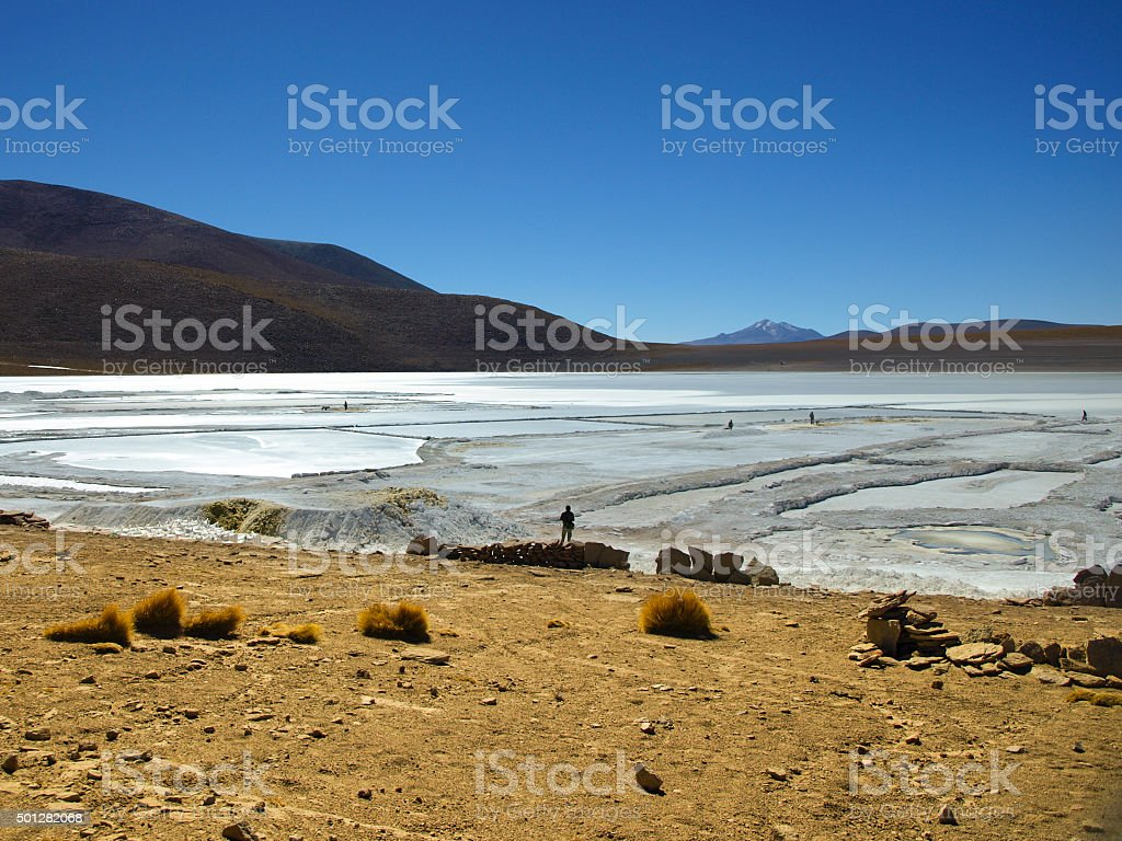 Borax mines in andean lagoon stock photo