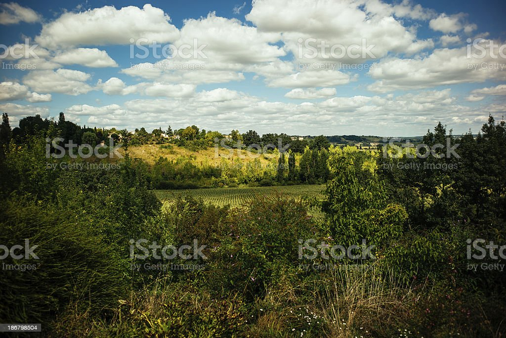 Bordeaux landscape royalty-free stock photo